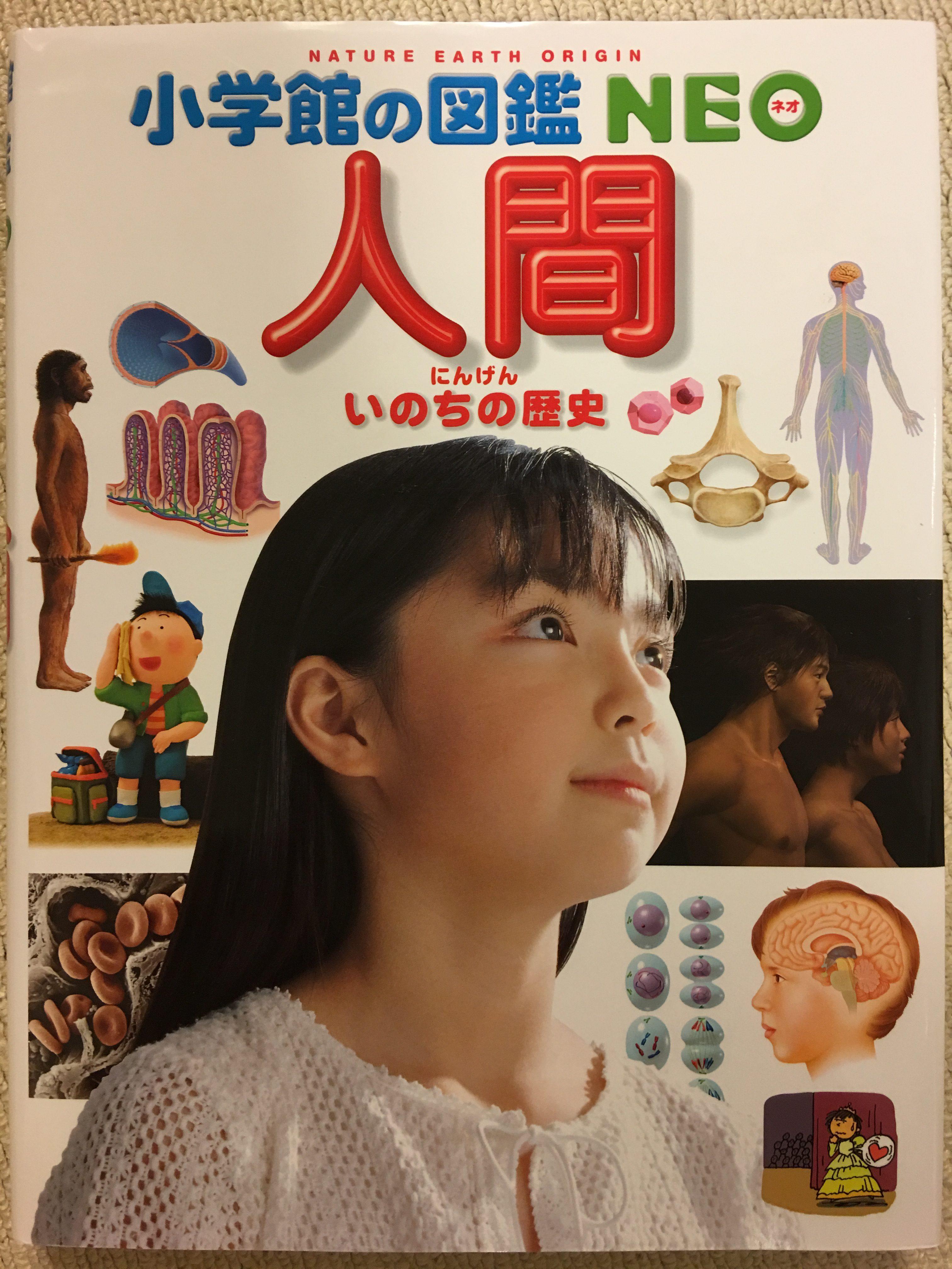 『小学館の図鑑NEO 人間』表紙