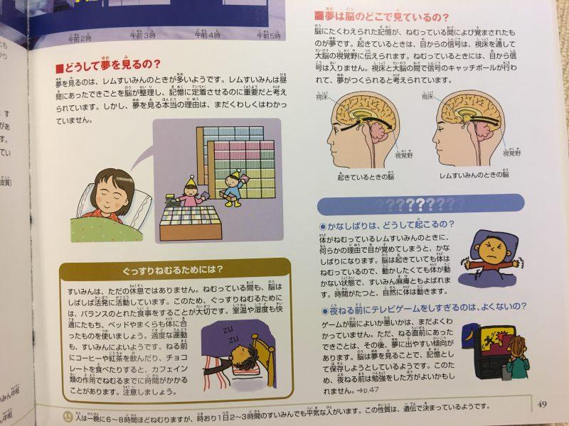 『小学館の図鑑NEO 人間・いのちの歴史』どうして夢を見るの?