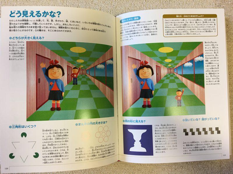 『小学館の図鑑NEO 人間・いのちの歴史』どう見えるかな?