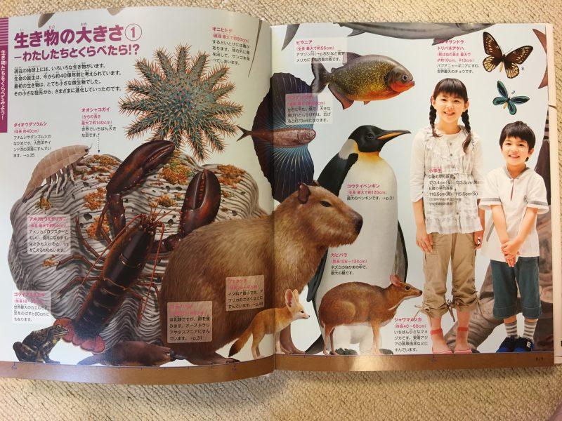 『小学館の図鑑NEO+ くらべる図鑑』生き物の大きさ1