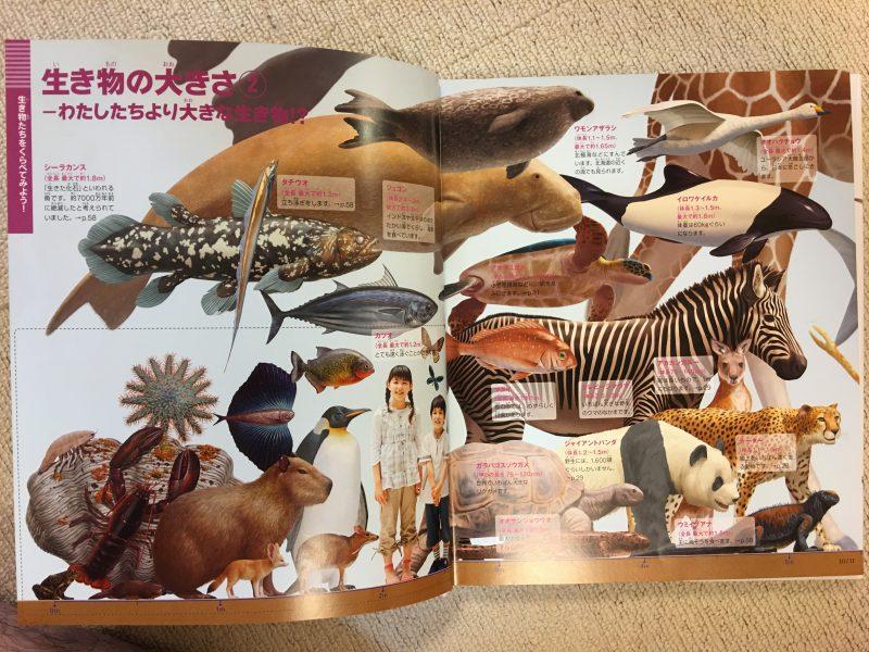 『小学館の図鑑NEO+ くらべる図鑑』生き物の大きさ2